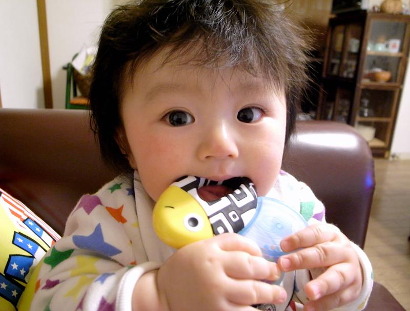 おもちゃを食べる唯真ボーイ
