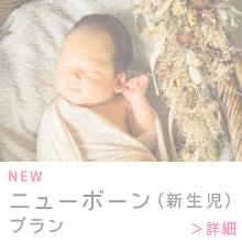 ニューボーン(新生児)プラン